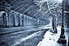 Monte Berico, Vicenza (Mia Battaglia photography) Tags: christmas hdr vicenza monteberico