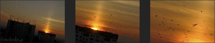 W stronę zachodzącego słońca