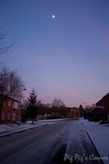 Wintery Night