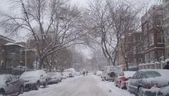 snowystreet1.10.09