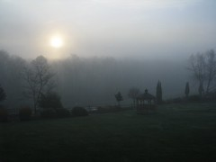 A Foggy Sunrise (gonisj) Tags: morning geese duck pond foggy goose kairos