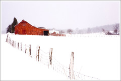 Barn in the Snow ([Christine]) Tags: snow barn westvirginia canaanvalley blueribbonwinner tuckercounty impressedbeauty