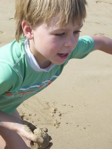 Sand-groper_7642