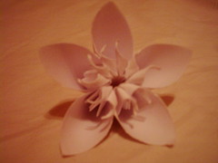 DSCI0013 (anamoniq) Tags: flower origami paperfolding