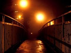 Misty Walkway (David Reece) Tags: lighting bridge light orange mist david weather yellow misty fog wales lights yahoo google cool interesting exposure university mood moody darkness sony low creative picture aberystwyth walkway 100 alpha atmospheric a100 penbryn pjm pentrejanemorgan lojng