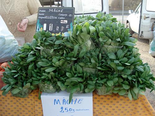 mâche (lamb's lettuce)
