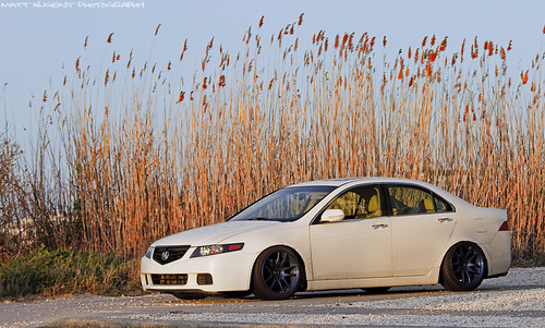 Mike's TSX
