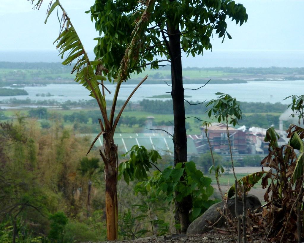 Negros-Dumaguete-Mabinay-Bacolod (47)