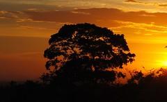 Sunset, again .