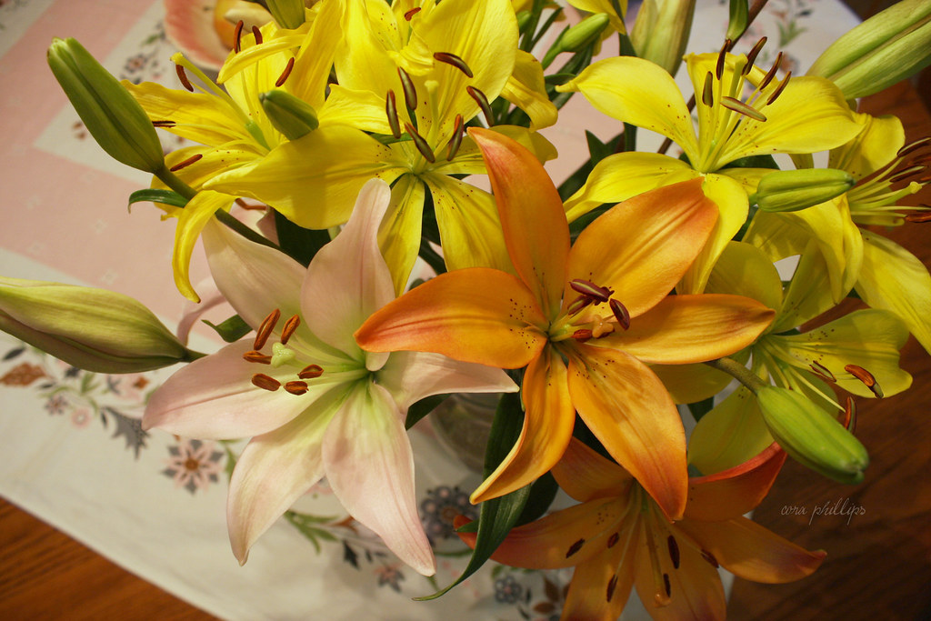 Lilies For Mama