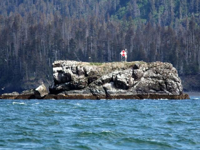 Gull Island off Homer 20110622