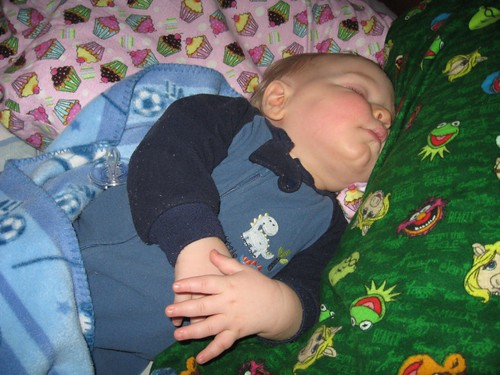 Cozy time snuggling with flannel - nap 3 of the day