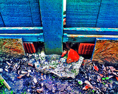 Disrepair (LostMyHeadache: Absolutely Free *) Tags: wood old blue red summer canada green nature fence outside outdoors rocks paint colours july objects ground canadian structure housing panels 2008 beams fallingapart disrepair calgaryalberta davidsmith trashbit lostmyheadache