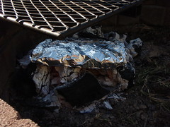 2644124256 718dec006b m Steps to Great Foil Cooking