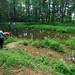 methodist church pond, cades cove, great smoky mountains national park, blount county, tennessee, melinda dalton, dan calhoun, clint smith, jamie barichivich, susan walls 1