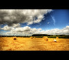 On a roll (Martyn Starkey) Tags: sky field clouds photographer steve sensational rolls hay soe themoulinrouge mywinners abigfave anawesomeshot impressedbeauty thegardenofzen thegoldendreams goldstaraward fickrlovers davincitouch photoexel