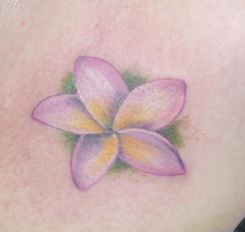 plumeria close up. Tattoo