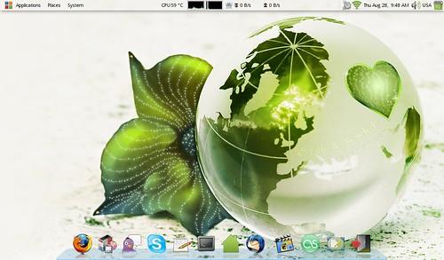 msiubuntu280808.png