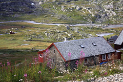 Mountain train station, Myrdal, Norway (**Anik Messier**) Tags: norway train norge railway flm flam norvge mywinners mywinner flmrailway flmvalley theperfectphotographer kingdomofnorway