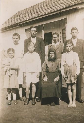 Família Lickel no Brasil