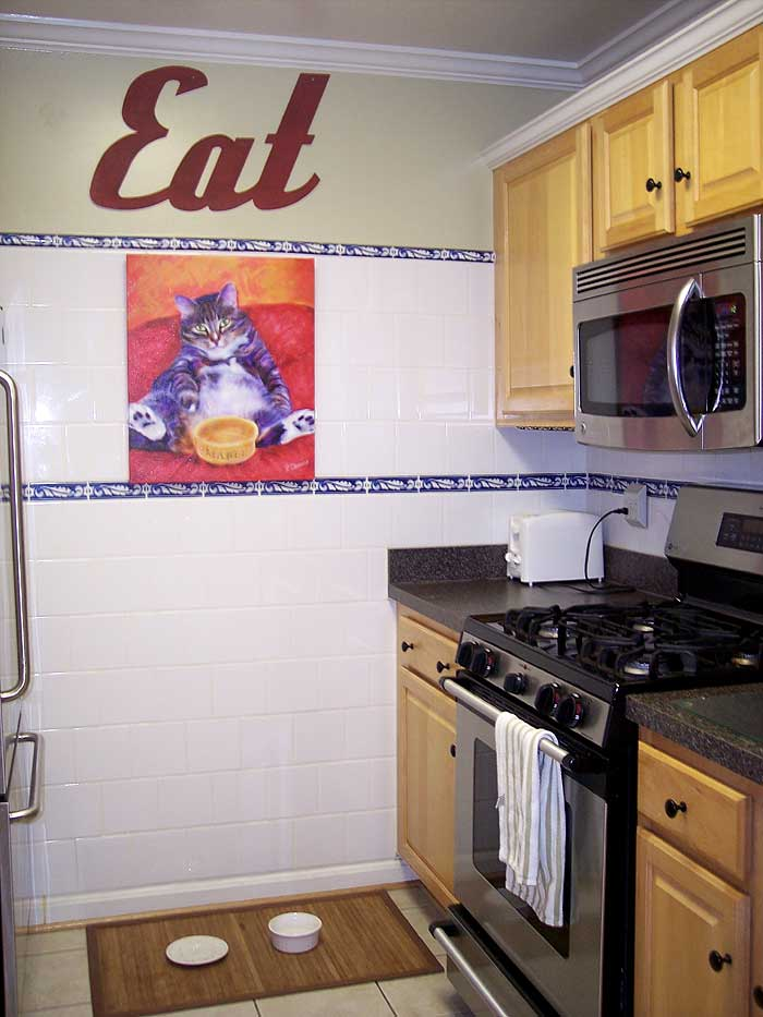 DC_apartment_kitchen