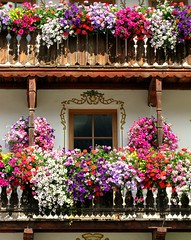 flowers n flowers - fiori su fiori (chpaola) Tags: pink blue windows red fab italy brown white black green glass yellow grey explore ems moso oldcity moos altoadige blueribbonwinner abigfave provinciadibz suedtyroln