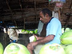 007 Hareshwar 23 (Meghna G.) Tags: india maharashtra konkan hareshwar