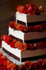 3086538855 0d5e2578fc m Baú de ideias: Decoração de casamento marrom (chocolate) e outras cores
