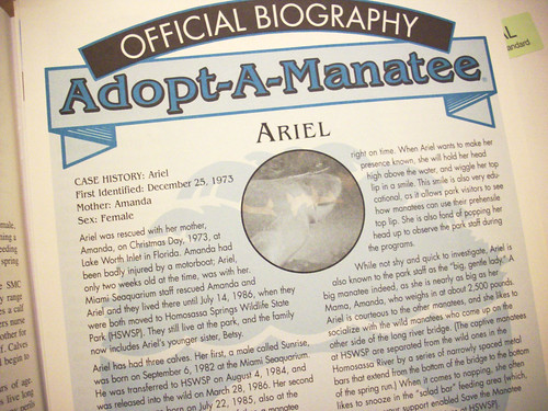 It is official! I have adopted a manatee!
