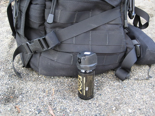 Pepper Spray, Part of the Gear (Photo: pig monkey on flickr)