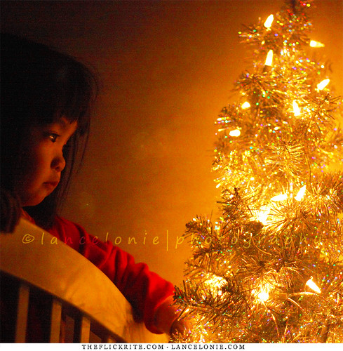 Sophia's Little Christmas Tree by lancelonie.com, on Flickr