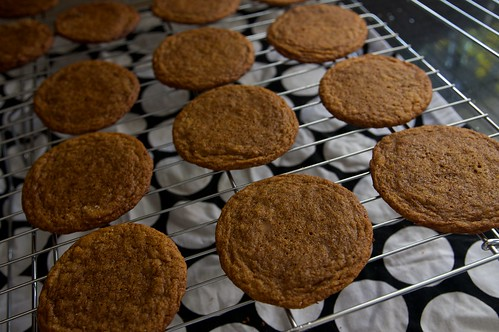 chewy ginger molasses parade