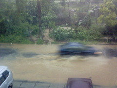Flood in front Office (14) (yuniar_wg) Tags: office flood front semarang kantor banjir hardrain