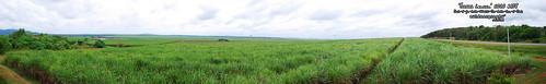 Outdoorgraphy™ : Ladang Tebu Chuping #1