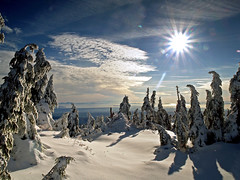 Early Winter Sun (Christopher J. Morley) Tags: blue trees sun white mountain snow canada vancouver bc view hiking olympus mount northshore e3 seymour myhangout