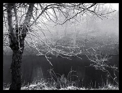 Memories (Kirsten M Lentoft) Tags: bw mist fog wonderful denmark monotone bec blueribbonwinner glostrup platinumphoto infinestyle vestvolden kirstenmlentoft novavitanewlife sensationalphoto everythingwillbeperfectnow