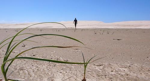 sand dunes near nelson bay