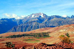 Andes agriculture (Lynn photographing the world) Tags: mountain peru field landscape dirt andes agriculture