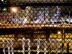 seattle park dog pets skyline night evening washington memorial downtown run remembrance overlook interstate5