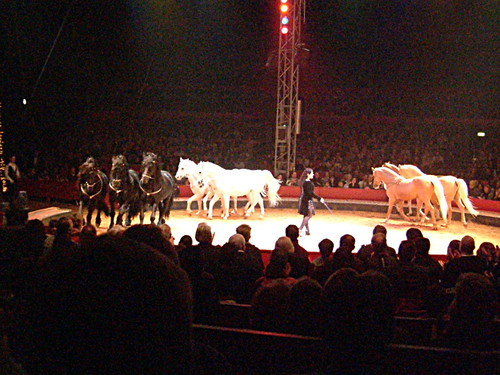 Zirkus_2009.01.06_05