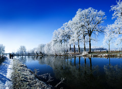 Winter Panorama - Kromme Rijn, Amelisweerd, Rhijnauwen, Utrecht (lambertwm) Tags: blue schnee trees winter panorama white snow cold holland reflection nature netherlands beauty sunshine contrast reflections river landscape frozen vinter utrecht frost quiet hiver nieve sneeuw nederland peaceful sunny bluesky frosty brina neve photomerge neige icy bas eis inverno    pays sn gel hielo amelisweerd clearsky glace winterwonderland landschap viewcount photostitch rhijnauwen krommerijn ghiaccio geada helada nvoa fozen escarcha gele    zonnig rijp hollanda zonneschijn invernale ijzig blauwehemel themewinter lwmfav frohieloynieve