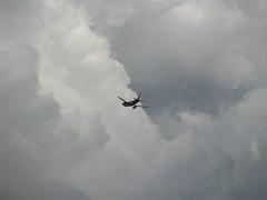 Vo TAM - So Paulo (ARTExplorer) Tags: brazil sky cloud airplane sopaulo aircraft aviation himmel wolke cu ciel sp cielo avio lucht nuage nuvem  flugzeug avin  tam brasile nube   sanpablo aviao paulista sanpaolo brsil wolk aviacin pilvi taivas       luftverkehr  estadodesopaulo  estadodesp votam kalangitan aviaocomercial