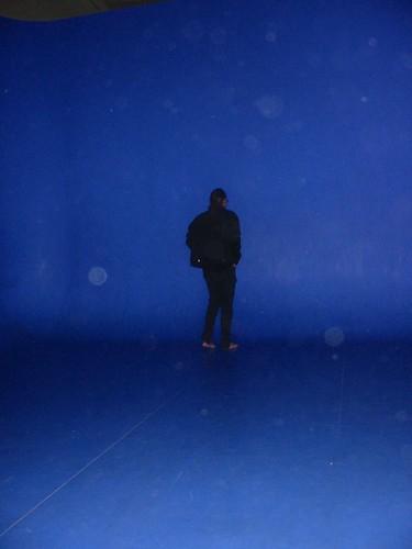 Chris vdb in de the Belgian Blue  Room