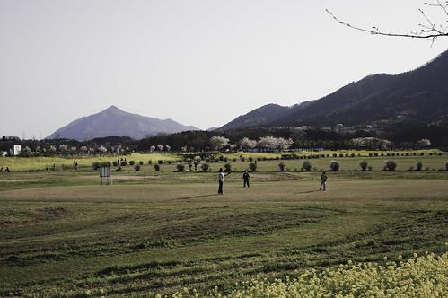 春の公園 2