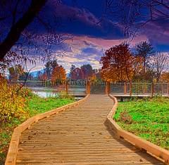 Boardwalk Colors (HeathMcConnell) Tags: landscape photography watermarked 1x15
