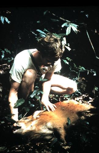 1982 on hunt