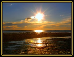 sunstar2 (kathycassidy57) Tags: beauty natures potofgold