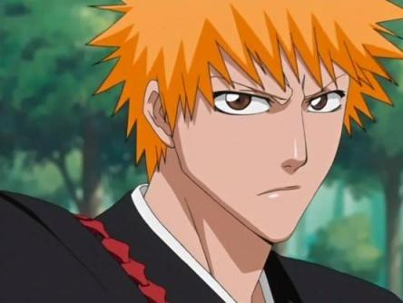 Bleach 370 The Course to Other Captains