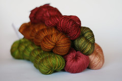Autumn (elinknits) Tags: autumn pretty yarn sundara seasonsclub