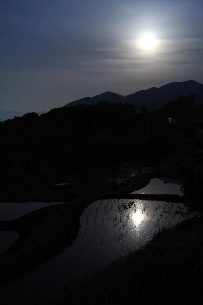 月夜の棚田